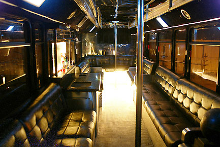 Bachelor / Bachelorette Party Buses